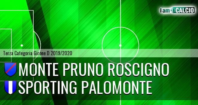 Monte Pruno Roscigno - Sporting Palomonte