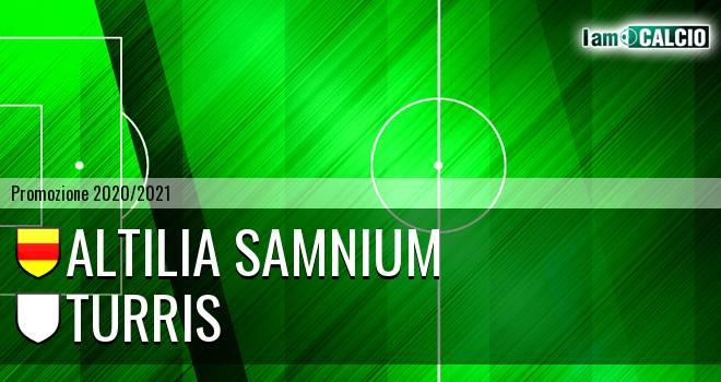 Altilia Samnium - Turris