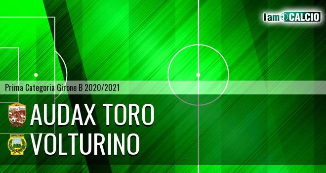 Audax Toro - Volturino