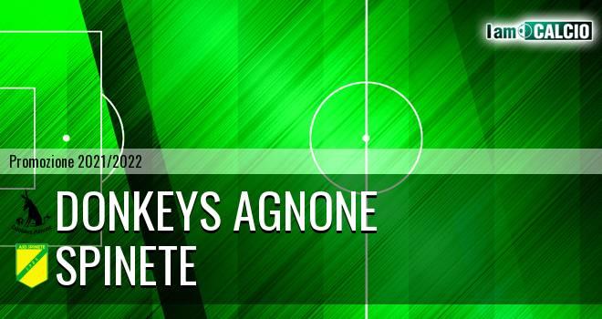 Donkeys Agnone - Spinete