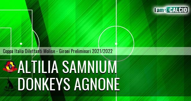 Altilia Samnium - Donkeys Agnone