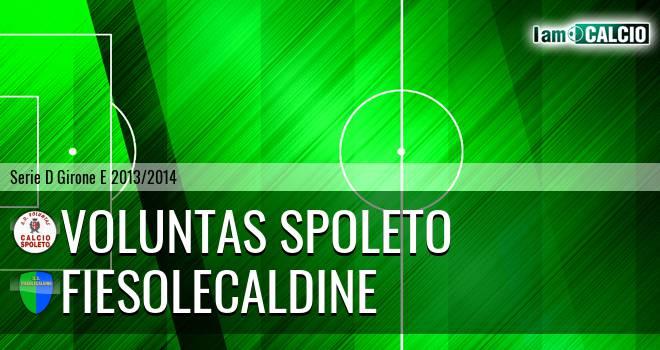 Voluntas Spoleto - FiesoleCaldine
