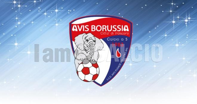Avis Borussia Policoro