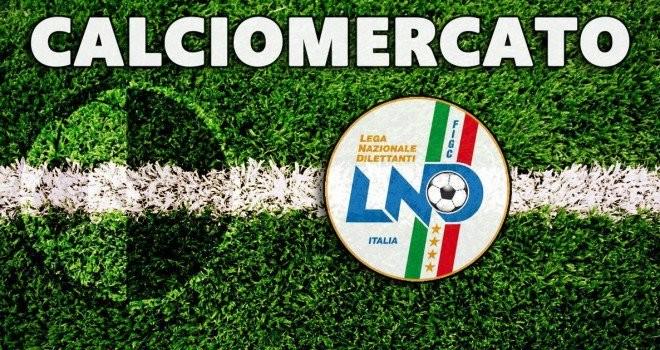 Calciomercato - Doppio colpo Stay O'Party: firmano i fratelli Marin