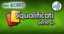 Serie D, squalificati girone H: 5 turni a Ferrieri e Liberti