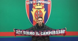 Calciatore pagato in ritardo: Inibito Perrucci, Campobasso penalizzato