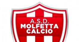 Molfetta Calcio, ufficiale l'arrivo di Sallustio e...