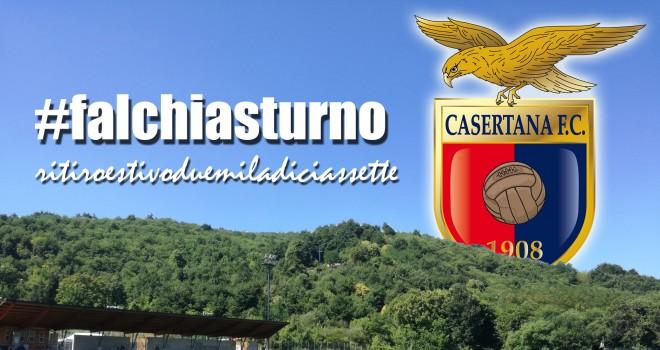 #FalchiaSturno
