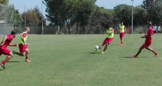 Bari, ripresi gli allenamenti in vista del Cittadella. Il report...
