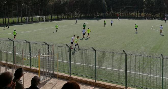 Virtus Avellino, domenica in famiglia per il settore giovanile