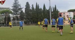 Ercolanese, il club granata risponde a De Felice e chiede scusa per...