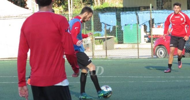 Nocerina-Cittanovese: recupera Cavallaro, 5 indisponibili per Morgia