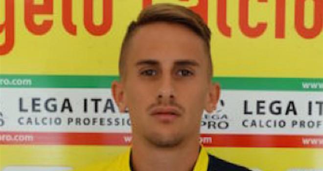 Nicolò Gazzotti