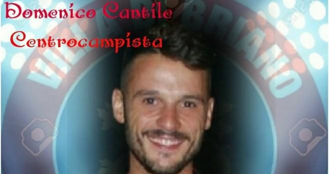 D. Cantile, Villa di Briano