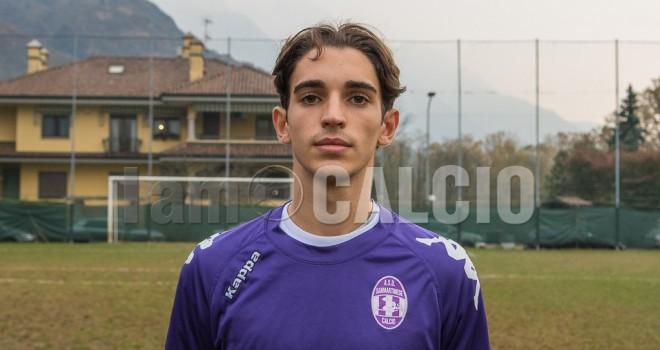 Andrea Delfino, Sizzano