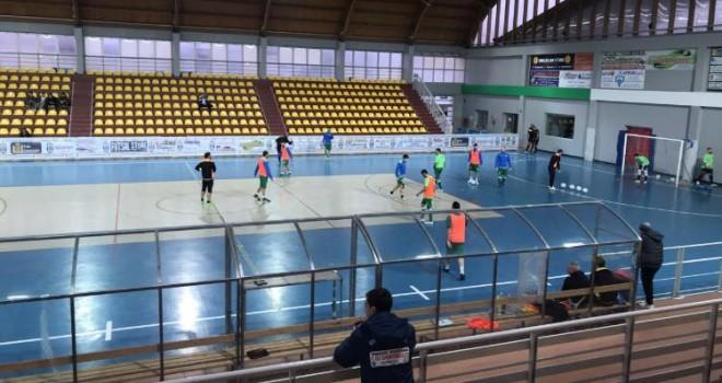 Real Rogit - Sandro Abate Five Soccer