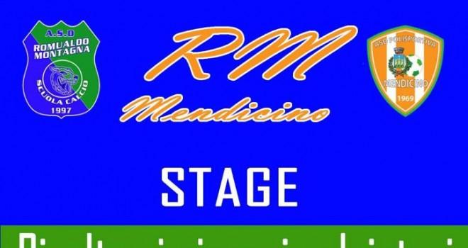 RM Mendicino