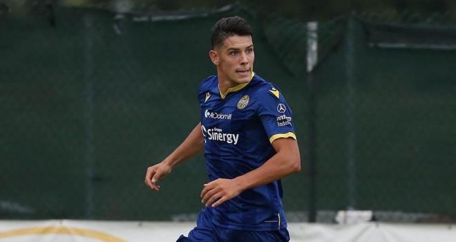 Mariusz Stepinski (Hellas Verona)