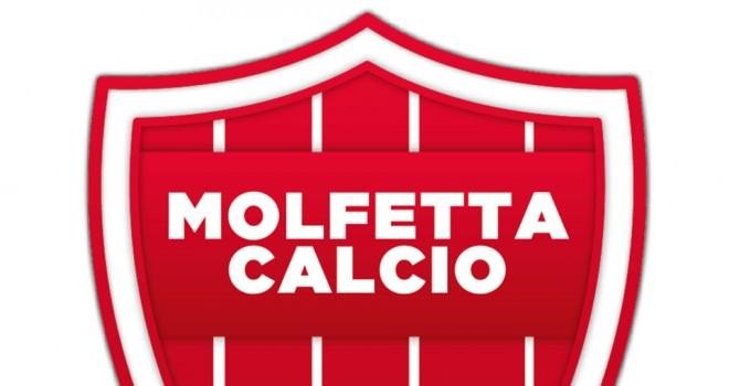 Molfetta in Serie D