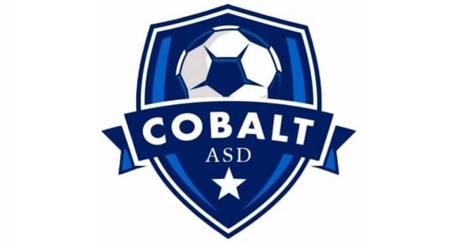 Calcio a 5. A San Cipriano d'Aversa nasce la Asd Cobalt C5