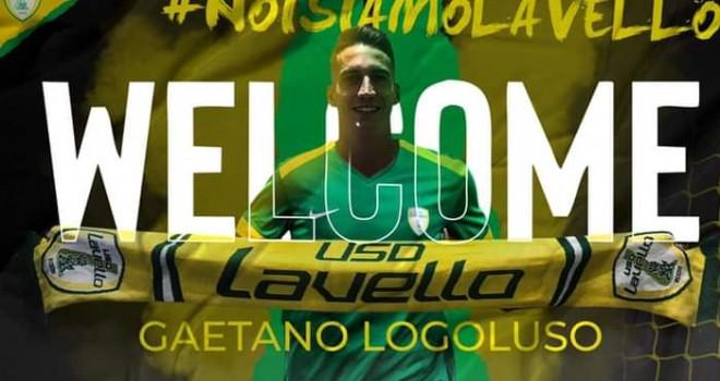 Gaetano Logoluso