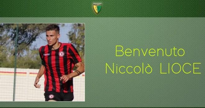 Niccolò Lioce