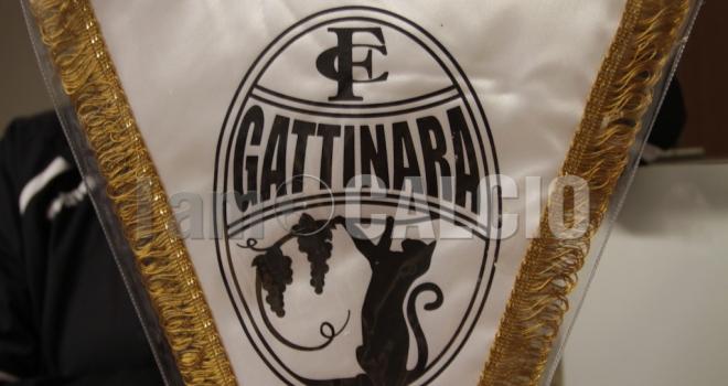 Un altro arrivo in casa Gattinara