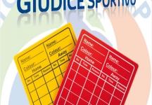 2° categoria: le decisioni del Giudice Sportivo