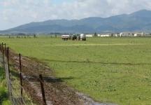 Il Bojano '62 si schiera contro le centrali a biomassa
